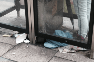 Picardy Place litter