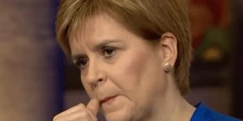 Sturgeon pondering