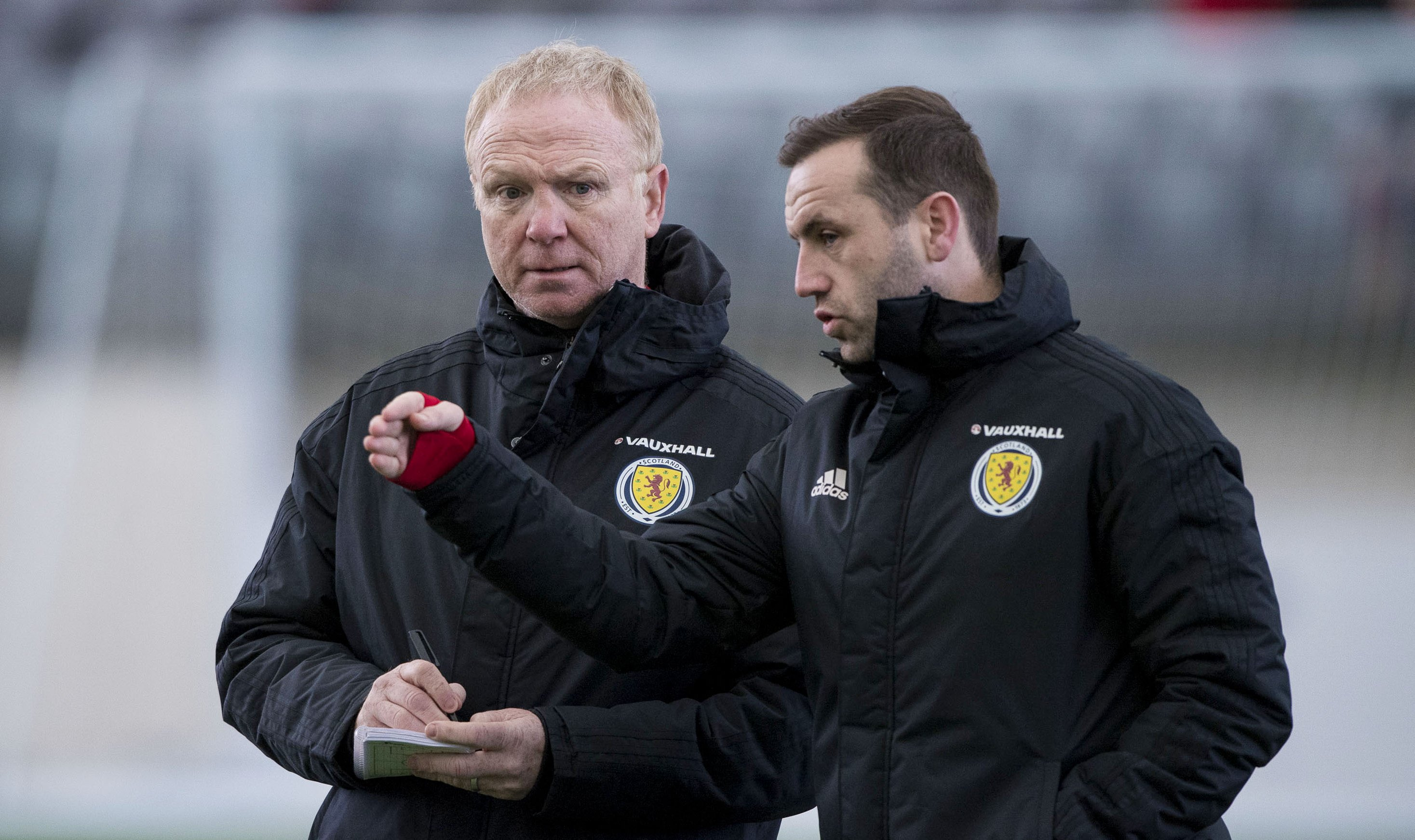 Alex McLeish and James McFadden