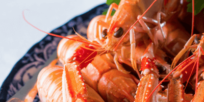 Scottish seafood, langoustine