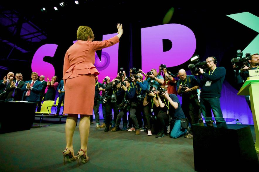 Sturgeon facing the cameras