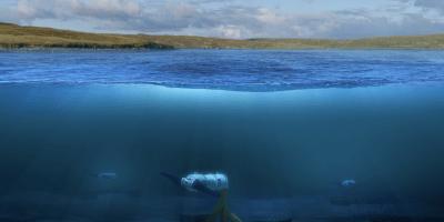 Nova-turbine-under-water