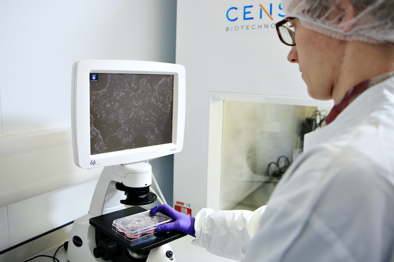 Censo-testing-kit